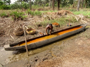 Village woman extracting oil from palm fruits in her canoe.