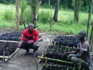 CCET volunteers starting the Tree Nursery