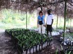 Arlene and CCET Volunteer, Abdul Foday view palm seedlings.