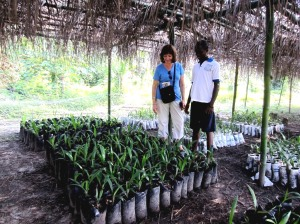 Arlene and CCET Volunteer, Foday Fofanah view oil palm seedlings.