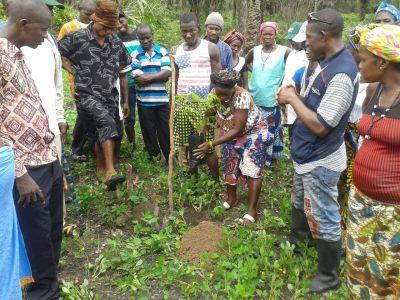 Workshop on erosion control.