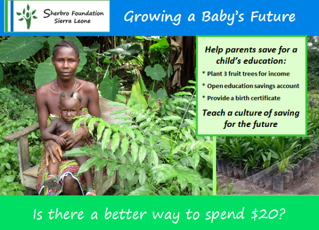 Growing a Baby's Future 2
