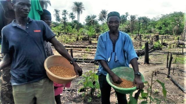 Planting rice May 24, '17 (2)