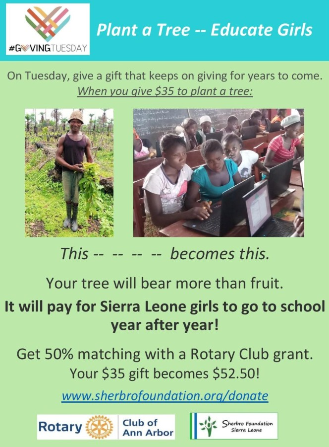 #GivingTuesday: Plant a Tree That Will Educate Sierra Leone Girls. Make it a gift.