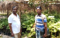 $142,000 Rotary Clubs Grant Propels Bumpeh Chiefdom into Growing Its OwnFuture